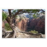 Zion - Angels Landing Poster