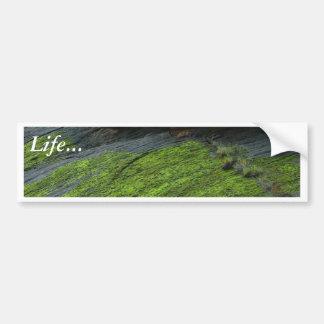 Zion Canyon Moss Bumper Stickers