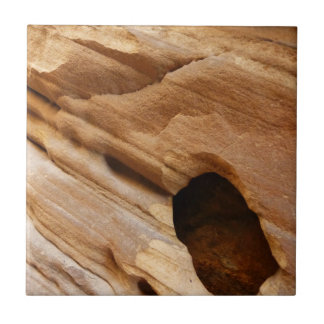 Zion Canyon Wall I Abstract Nature Photography Tile