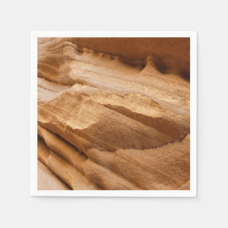Zion Canyon Wall II Red Rock Abstract Photography Paper Napkin
