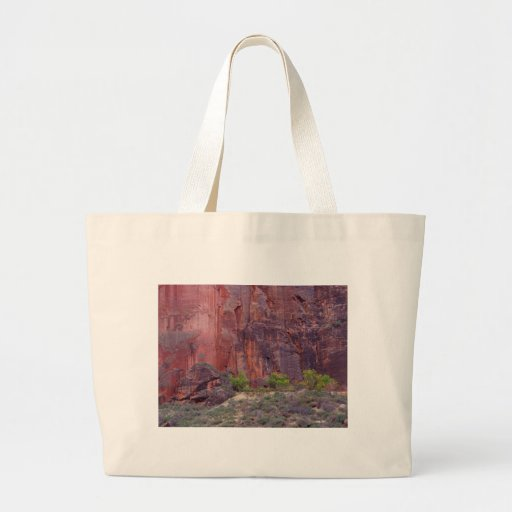 Zion Canyons Big Bend Cliffs Red Canvas Bags