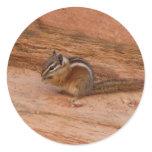 Zion Chipmunk on Red Rocks Classic Round Sticker