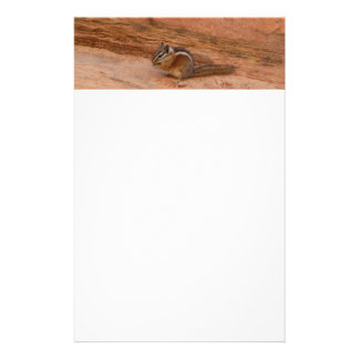 Zion Chipmunk on Red Rocks Stationery