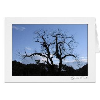 Zion Gnarled el árbol Tarjeta De Felicitación