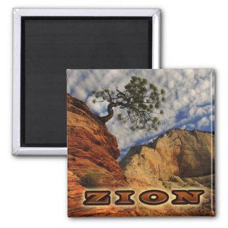 Zion Magnate 2 Inch Square Magnet