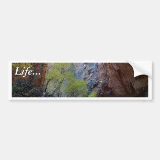 Zion Narrows Bumper Sticker