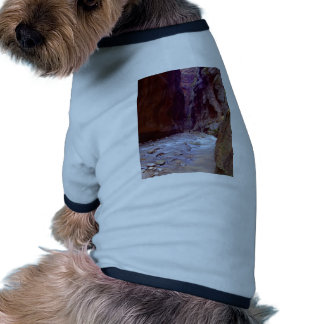 Zion Narrows Hiking Through The River In Zion Narr Pet Clothes