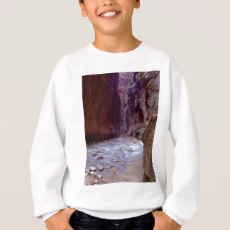 Zion Narrows Hiking Through The River In Zion Narr Sweatshirt