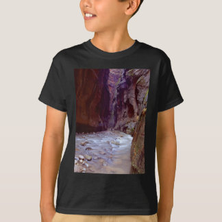 Zion Narrows Hiking Through The River In Zion Narr T-Shirt