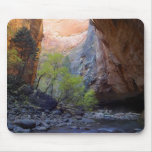 Zion Narrows Mouse Mat