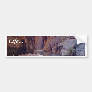 Zion Narrows National Park Bumper Stickers