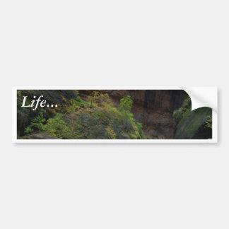 Zion Narrows Streams Virgin Rivers Bumper Stickers