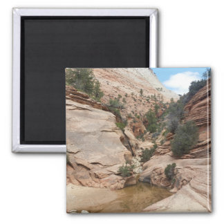 Zion National Park 2 Inch Square Magnet