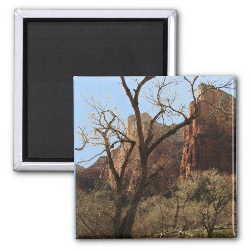 Zion National Park Fridge Magnet