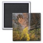 Zion National Park, Utah. USA. Ephemeral 2 Inch Square Magnet