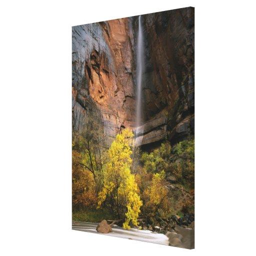 Zion National Park, Utah. USA. Ephemeral Canvas Print