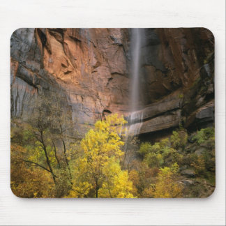 Zion National Park, Utah. USA. Ephemeral Mouse Pad