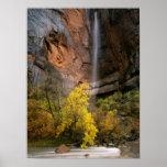 Zion National Park, Utah. USA. Ephemeral Print