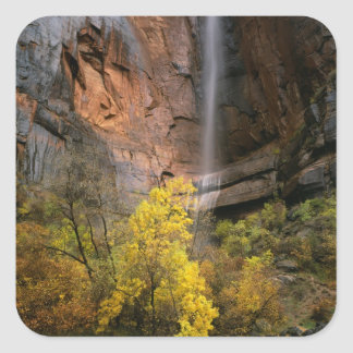 Zion National Park, Utah. USA. Ephemeral Square Sticker