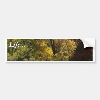 Zion National Park Yellow Bumper Stickers