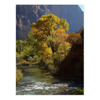 Zion National Park Yellow Postcards