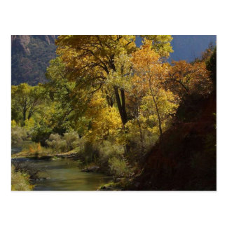 Zion National Park Yellow Post Cards