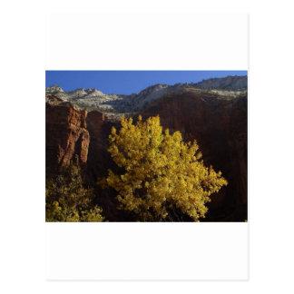 Zion Park Postcard