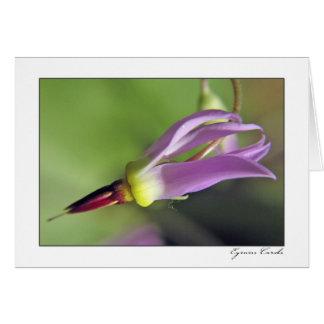 Zion Purple Flower Card