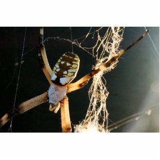 zipper spider statuette