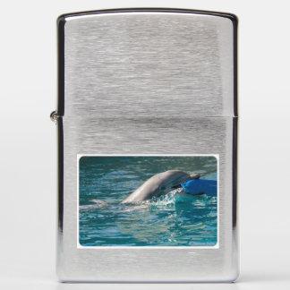Zippo lighter for dolphin lovers