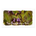 Zippy Bee Business Card Template