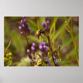 Zippy Bee; Customizable Posters