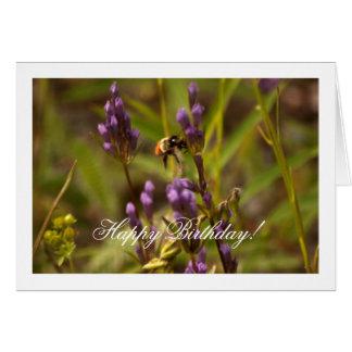Zippy Bee; Happy Birthday Greeting Card