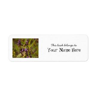 Zippy Bee Custom Return Address Label