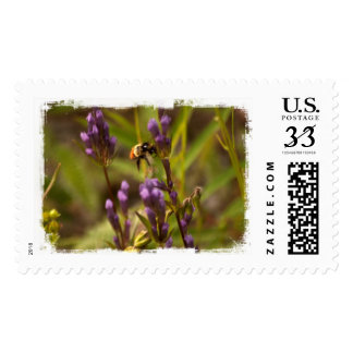 Zippy Bee; No Text Postage Stamps