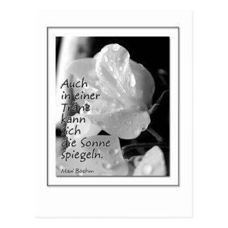 Zitat-Traene Postcard