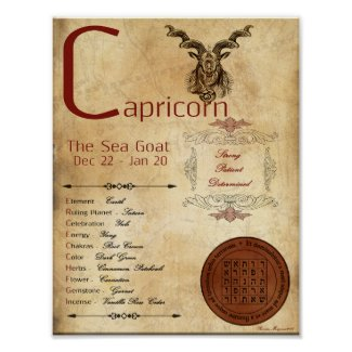 ZODIAC CAPRICORN Birth Sign POSTER