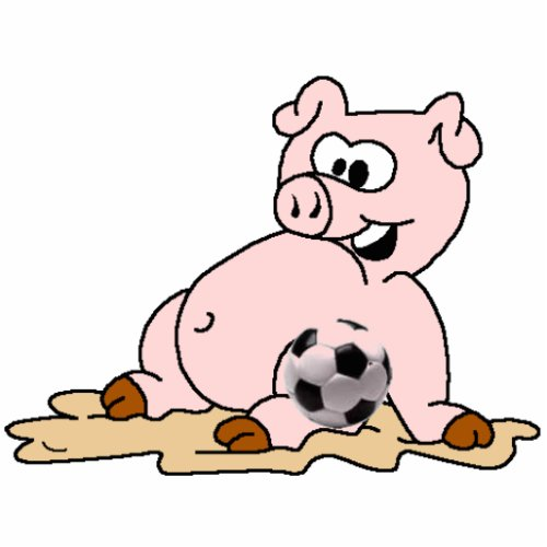 zodiac-pig-pic,