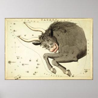 """Zodiac Sign: Taurus"" poster/print"