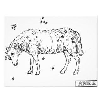 zodiac-signs-1 anuncio