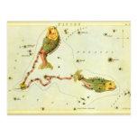 Zodiaco de la constelación de los pescados de postal
