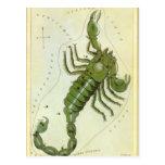 Zodiaco de la constelación del escorpión de la ast tarjeta postal