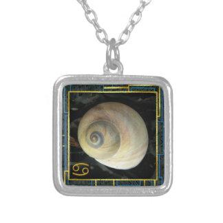 Zodiaco del Seashell luna Shell del cáncer Grimpolas