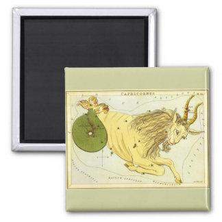 Zodiaco del vintage, constelación del Capricornio Imán Cuadrado