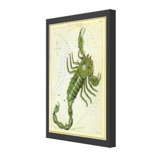 Zodiaco del vintage, constelación del escorpión de impresión en lienzo estirada