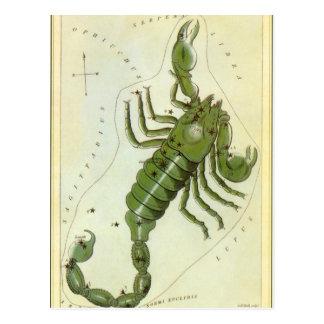 Zodiaco del vintage, constelación del escorpión de postal