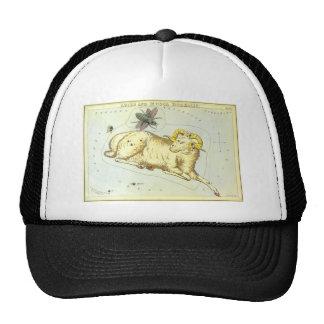 Zodiaco del vintage, constelación del espolón del gorras de camionero
