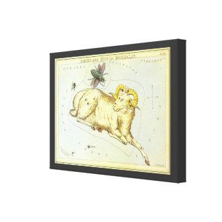 Zodiaco del vintage, constelación del espolón del impresión en lienzo estirada