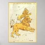 Zodiaco del vintage, constelación del león de Leo Póster