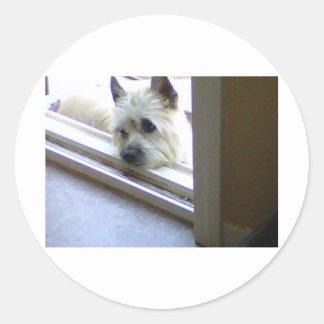 Zoe Cairn Terrier Classic Round Sticker